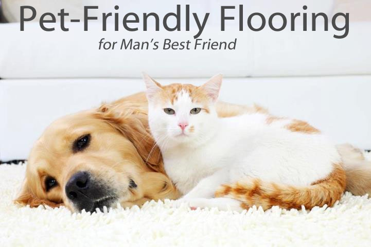 Pet friendly Flooring