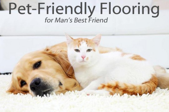 Pet Friendly Flooring for Man's Best Friend